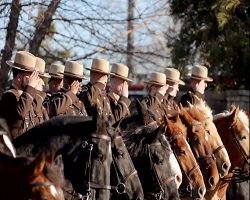 Mounted Baltimore Officers saluting from atop their horses at a funeral